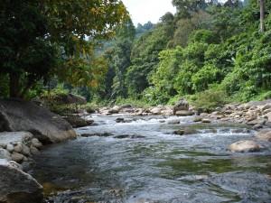 Kiriwong in der Provinz Nakhon Si Thammarat (Nationalpark)