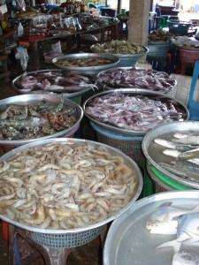 Frisch gefangene Garnelen und Tintenfische auf einem Markt in Tha Sala